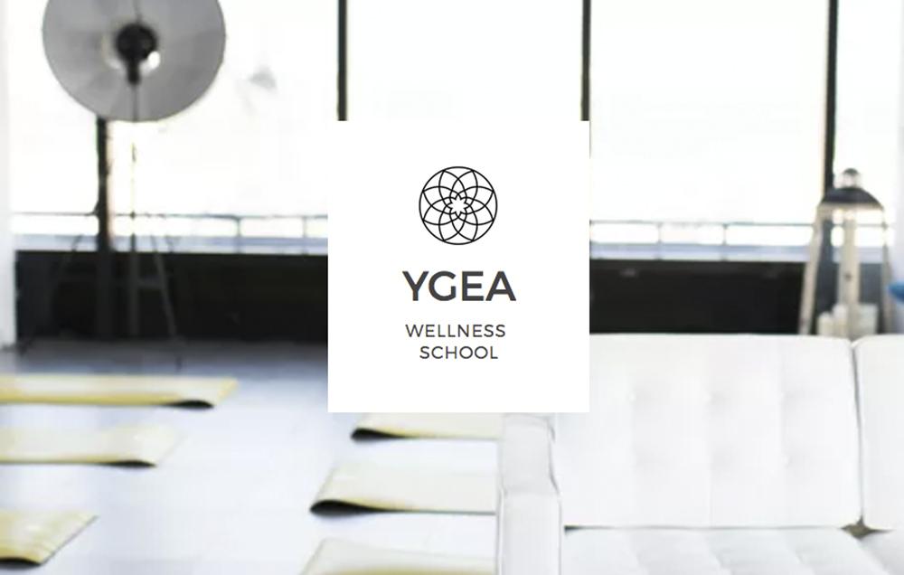 ygea school